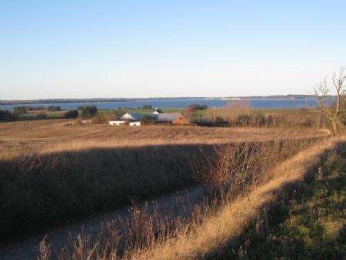 Hald/Hejlskov - 1 - Mod Hald Holte med udsigt til Lundø og Hessel